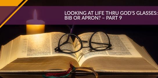 Looking at Life Thru God's Glasses: Bib or Apron? - Part 9